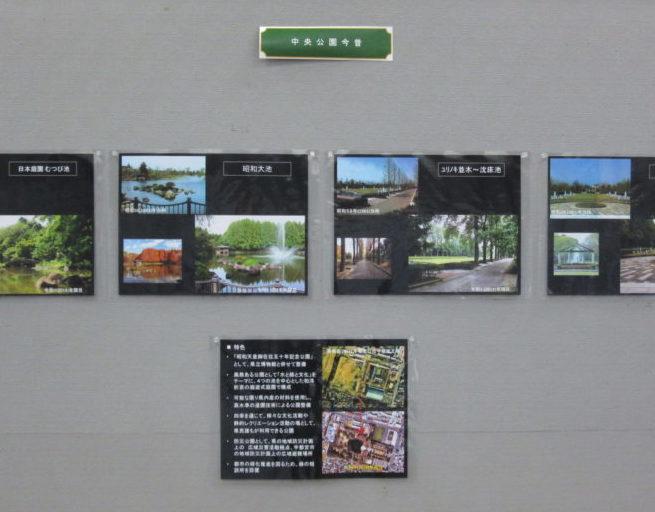 中央公園回顧写真展